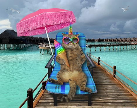 The beige cat unicorn in heart shaped sunglasses is sitting in the beach chair and eating a rainbow ice cream cone on the wooden pier under a pink umbrella in the sea.
